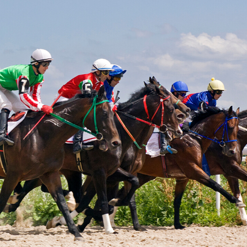 Things to do near Gatwick  - Lingfield Park Racecourse